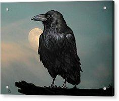 Seeking Poe Acrylic Print by Hazel Billingsley