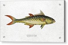 Seer Fish Acrylic Print
