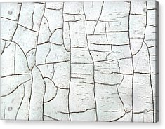 Acrylic Print featuring the photograph Segments by Kjirsten Collier