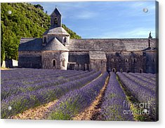 Senanque Abbey Acrylic Print by Bob Phillips