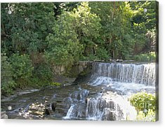 Seneca Keuka Trail Acrylic Print by William Norton