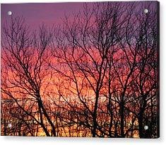 Sensational Sunrise Marching In Acrylic Print
