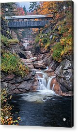 Sentinal Pine Bridge - White Mountains National Forest Acrylic Print by Thomas Schoeller