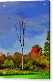 Acrylic Print featuring the photograph Sentinel Tree by Dennis Lundell
