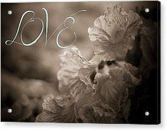 Sepia Love Acrylic Print