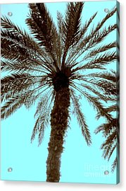 Acrylic Print featuring the photograph Sepia Palm by Jeanne Forsythe