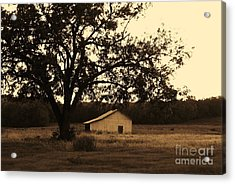 Acrylic Print featuring the photograph Sepia Simplicity by Julie Clements
