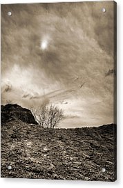 Acrylic Print featuring the photograph Sepia Skies by Meir Ezrachi