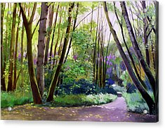 September In Springbrook Park Acrylic Print by Melody Cleary