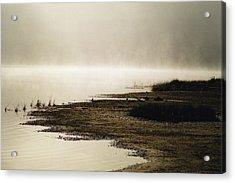 September Morning Acrylic Print by David Porteus