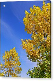 Acrylic Print featuring the photograph September Sky by Debi Dmytryshyn