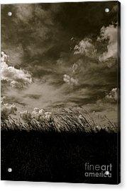 September Sky Acrylic Print by Tim Good