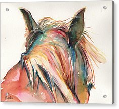 Horse Painting In Watercolor Serendipity Acrylic Print