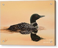 Serene Beauty Acrylic Print by James Williamson