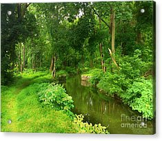Serene Reflections Acrylic Print by Becky Lupe