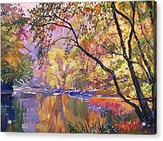 Serene Reflections Acrylic Print by David Lloyd Glover