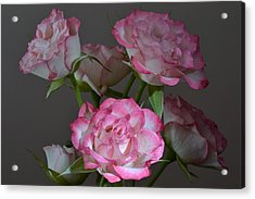 Serene Roses. Acrylic Print by Terence Davis