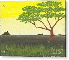 Serengeti Acrylic Print by David Jackson
