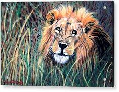 Serengeti Ruler Acrylic Print