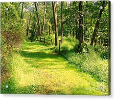 Acrylic Print featuring the photograph Serenity by Becky Lupe