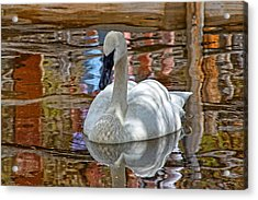 Serenity In Color Acrylic Print by Rick Lewis