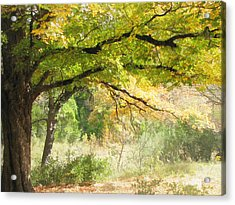 Serenity Acrylic Print by Wendy J St Christopher