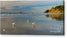 Serinity At The Coast Acrylic Print
