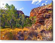 Serpentine Creek  Acrylic Print by Bill  Robinson