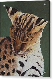 Acrylic Print featuring the painting Serval Nap by Margaret Saheed