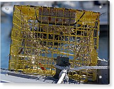Sesuit Harbor Lobster Cage Acrylic Print