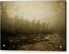 Set In Fog Acrylic Print by Kathy Jennings