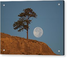 Setting Harvest Moon Acrylic Print