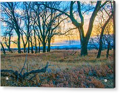 Setting Sun At Rocky Mountain Arsenal_1 Acrylic Print