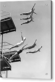 Seven Champion Diving In La Acrylic Print by Underwood Archives