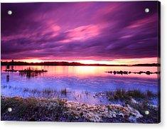Severn River Stunner Acrylic Print by Jennifer Casey