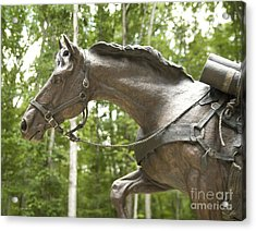 Sgt Reckless Acrylic Print