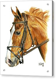Shackleford Acrylic Print by Pat DeLong