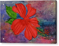 Shades Of Red Hibiscus Acrylic Print by Linda Brown
