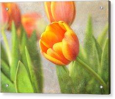 Shades Of Spring Acrylic Print