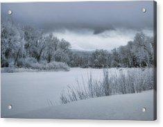 Shades Of Winter Acrylic Print by Ellen Heaverlo