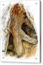 Shades Of Wood Acrylic Print by Marcia Lee Jones