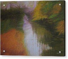 Shadow Creek Acrylic Print by Harvey Rogosin