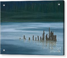 Shadow Host In The Mist Acrylic Print