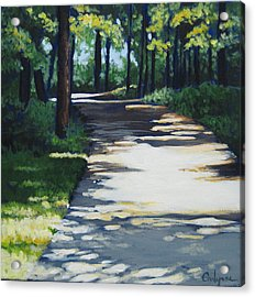 Shadow Path Acrylic Print by Carlynne Hershberger