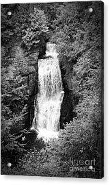 Shadowed Falls Acrylic Print