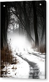 Shadows And Mist At Mentha Acrylic Print by Penny Hunt