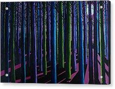 Shadows And Moonlight Acrylic Print