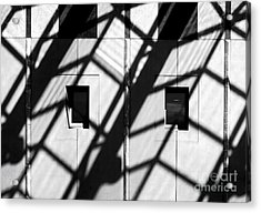 Shadows Canberra Acrylic Print by Steven Ralser