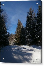Shadows In The Snow Acrylic Print by Steven Valkenberg
