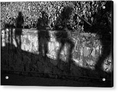 Shadows In The Vineyard Acrylic Print by Colleen Williams